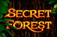 Слот Secret Forest в игровом зале Вулкан онлайн