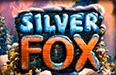 Silver Fox — онлайн слоты о северном лисе в Вулкан казино