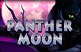 Игровые автоматы на деньги Panther Moon в онлайн казино Вулкан